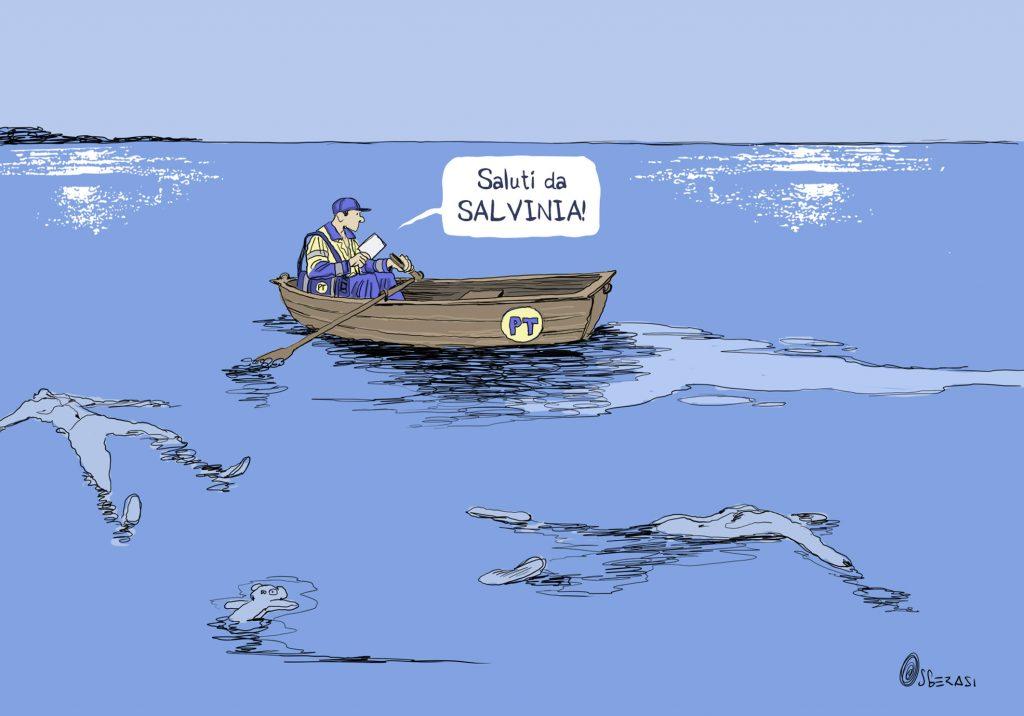 Saluti da Salvinia